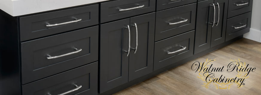 Shaker Black Kitchen Cabinets